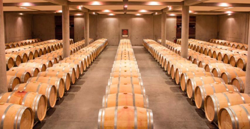 Foire aux vins 2018 : un projet 100% étudiant !